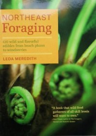 Book - Northeast Foraging - Meredith